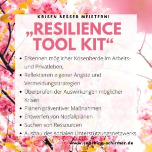Natalie Schirmer Resilienz